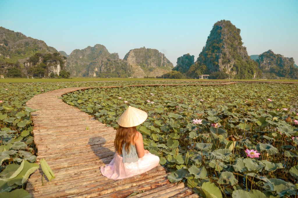 girl with hat sitting on walkway in the middle of sea roses field