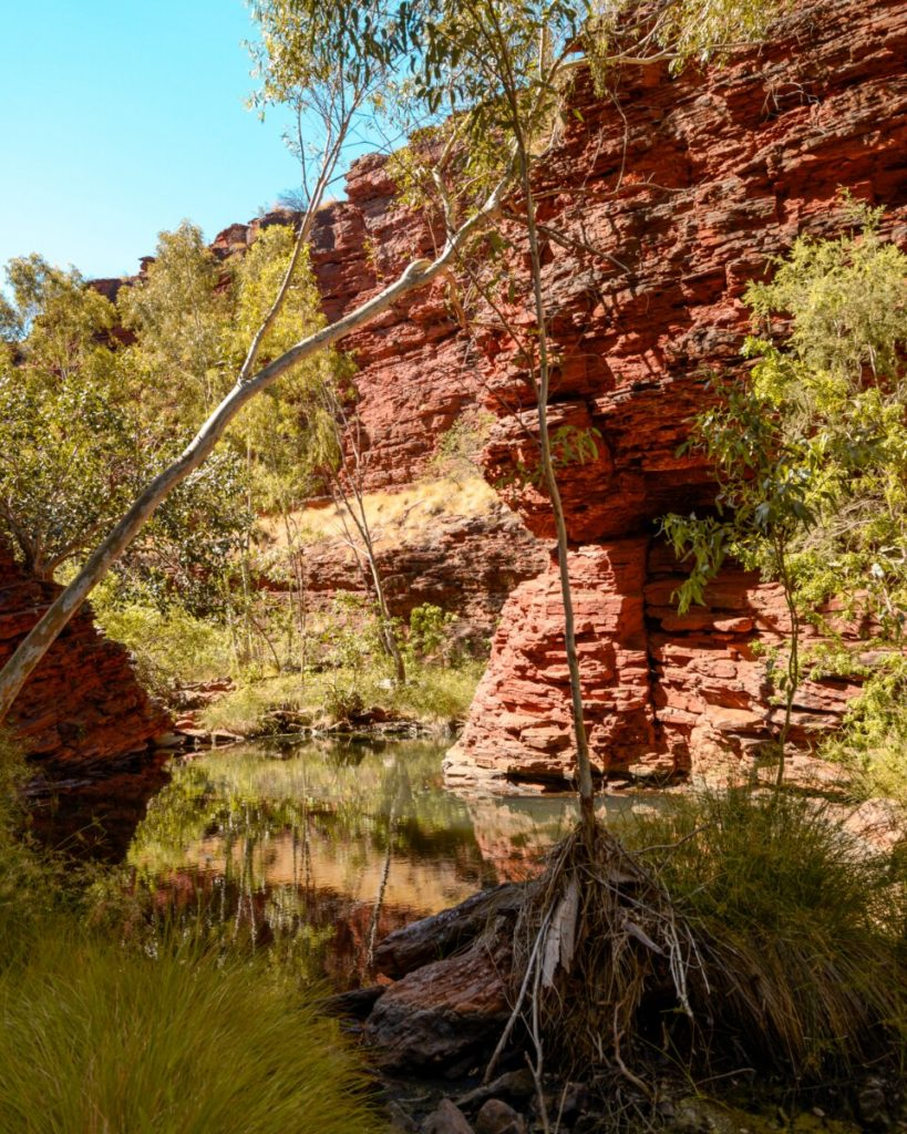 shallow natural pool in Weano Gorge in Karijini National Park