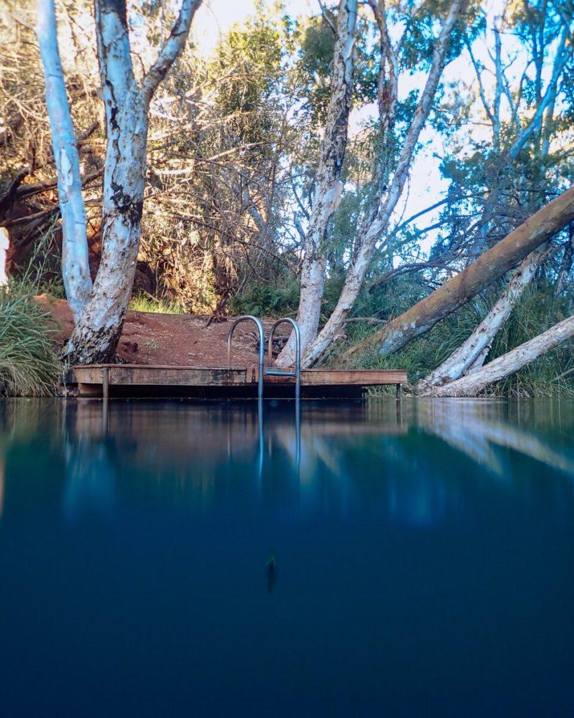 Fern Pool Jubura in Karijini
