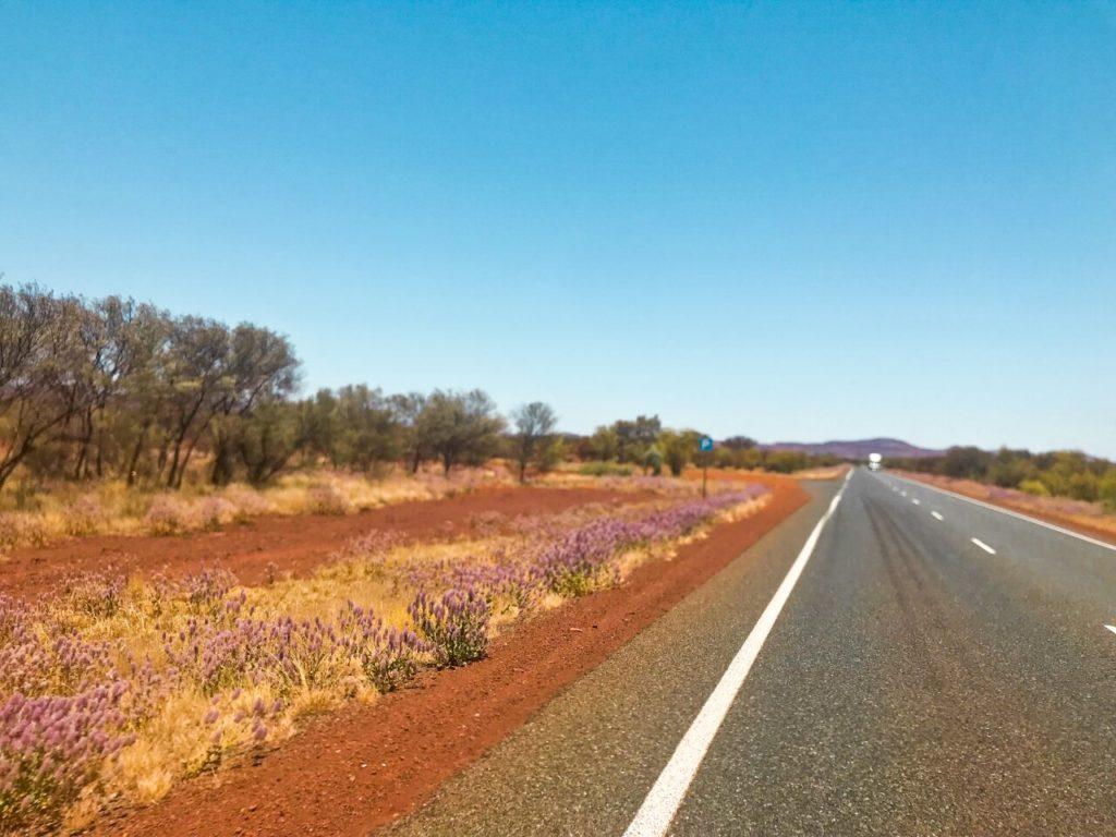 Planning a Roadtrip - open road in Australia