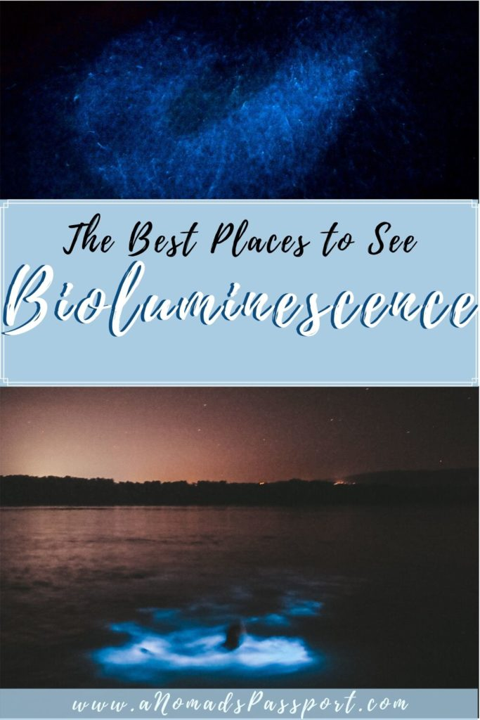 Where to Find Bioluminescence around the World with photos of the natural phenomena