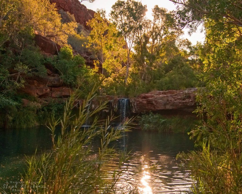 Fern Pool, Australia