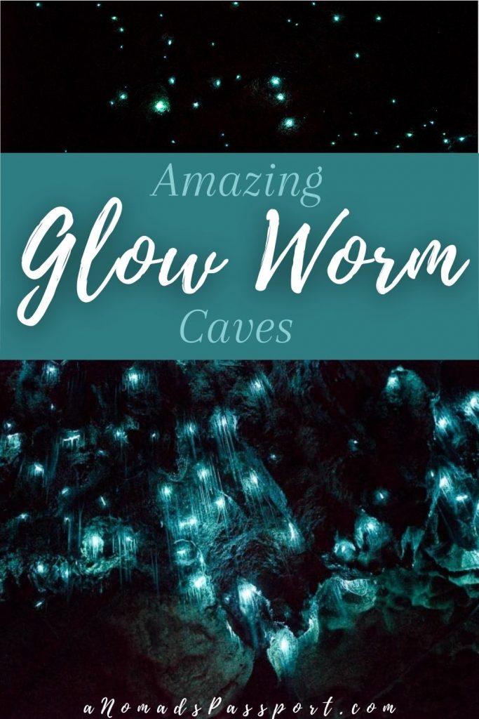 Amazing Glow Worm Caves