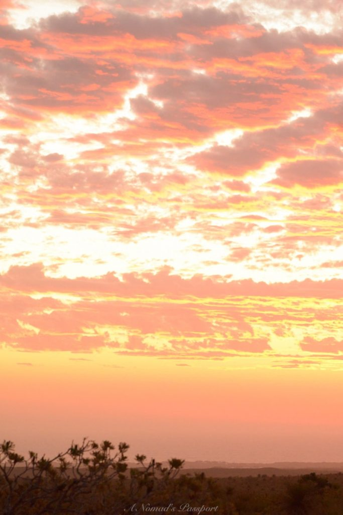Pink-yellow cloudy sky during sunset