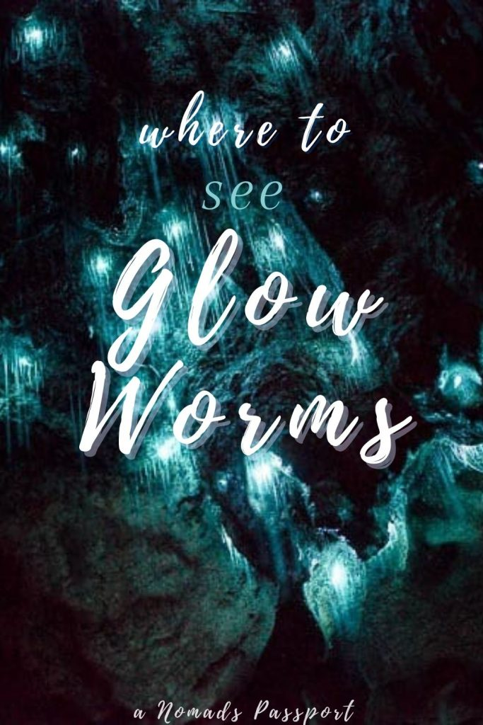 Where to see Glow Worms in Caves in New Zealand and Australia