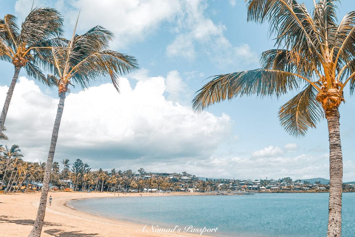 beach with palm which is a hidden gem in Australia