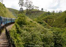 Sri Lanka Travel Budget – the cost of travel in Sri Lanka
