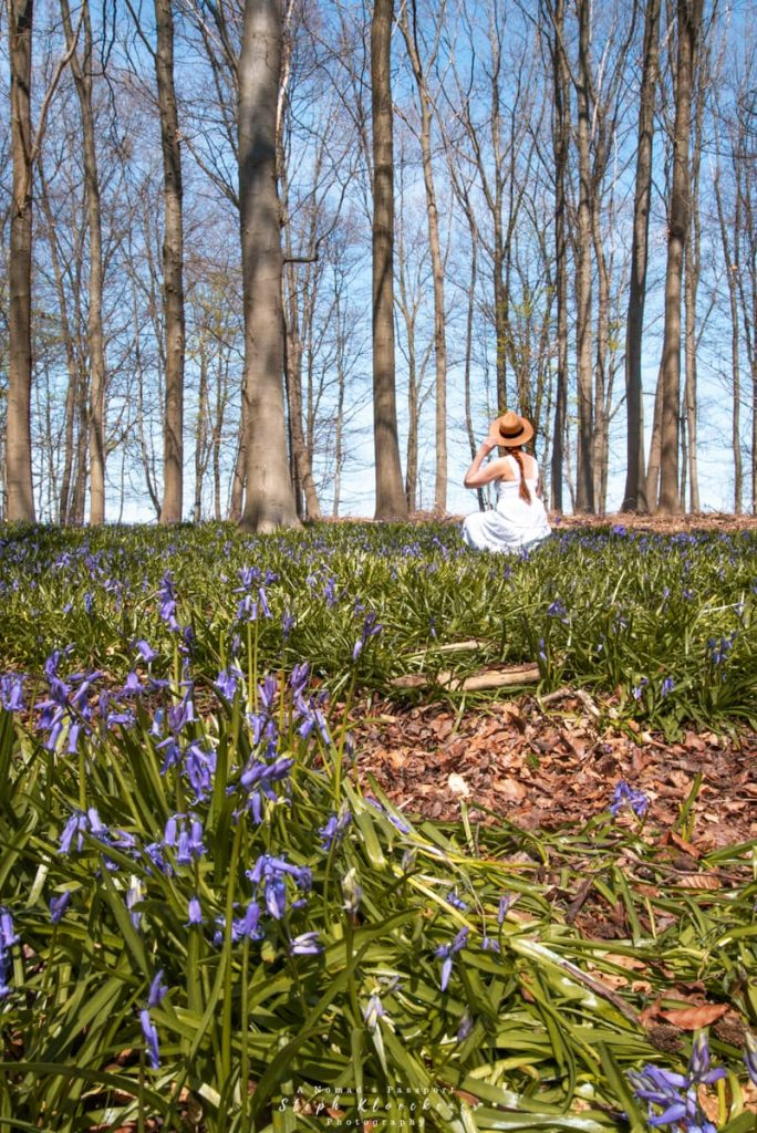 woman in bluebell forest in Germany