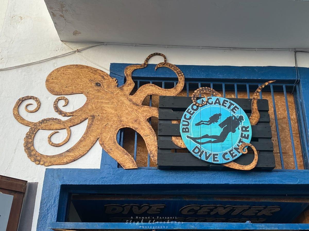 Buceo Agaete Dive Center in Puerto de las Nieves