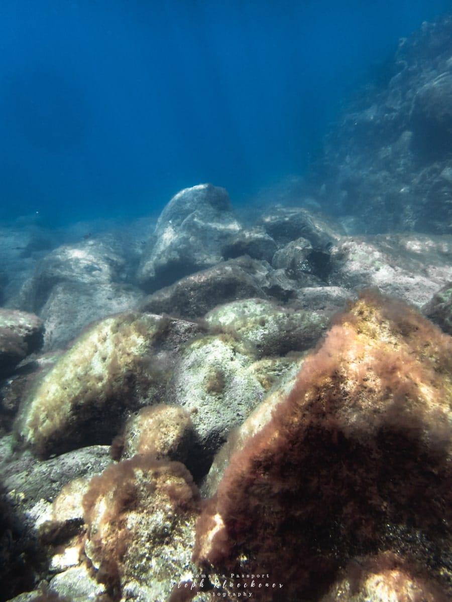 El Perchel dive site in Gran Canaria